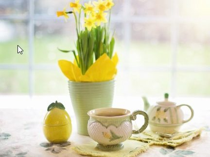 spring tea and plant sale