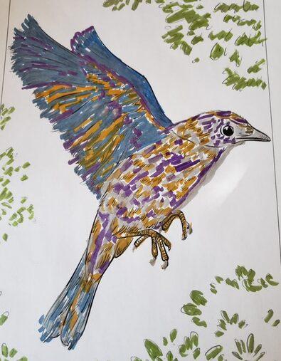 Multibird